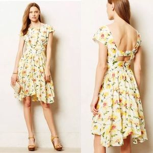 Anthro Pleated Matilija Dress by Lil in size 12